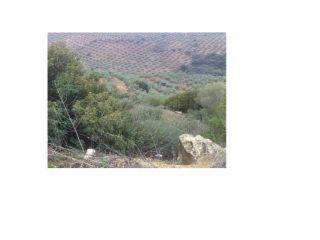 Finca rustica en Segura De La Sierra