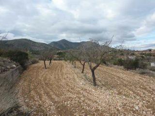 Otros en venta en Hondón De Las Nieves de 15002  m²