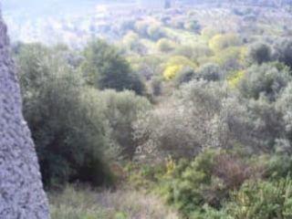 Suelo en Torrechiva