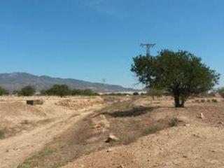 Chalet en venta en Fuente Álamo De Murcia de 12857  m²
