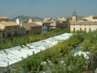 Piso en venta en C. Curt, 1, Pobla (sa), Illes Balears