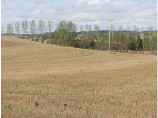 Terreno urbanizable en venta en poligono 9