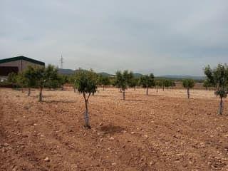 Otros en venta en Caudete De Las Fuentes de 3.850,00  m²
