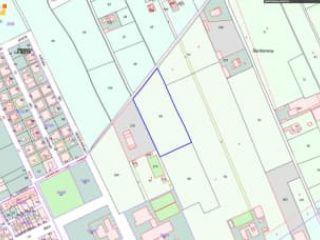 Otros en venta en Santomera de 7.532,00  m²