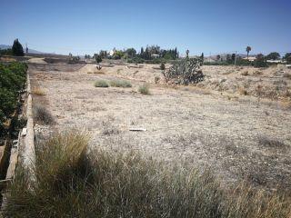 Calle Diseminado Los Llanos 263