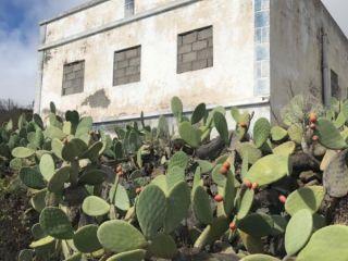 Vivienda en venta en c. la rosa, 7, Pinar, El (v. Hierro), Sta. Cruz Tenerife